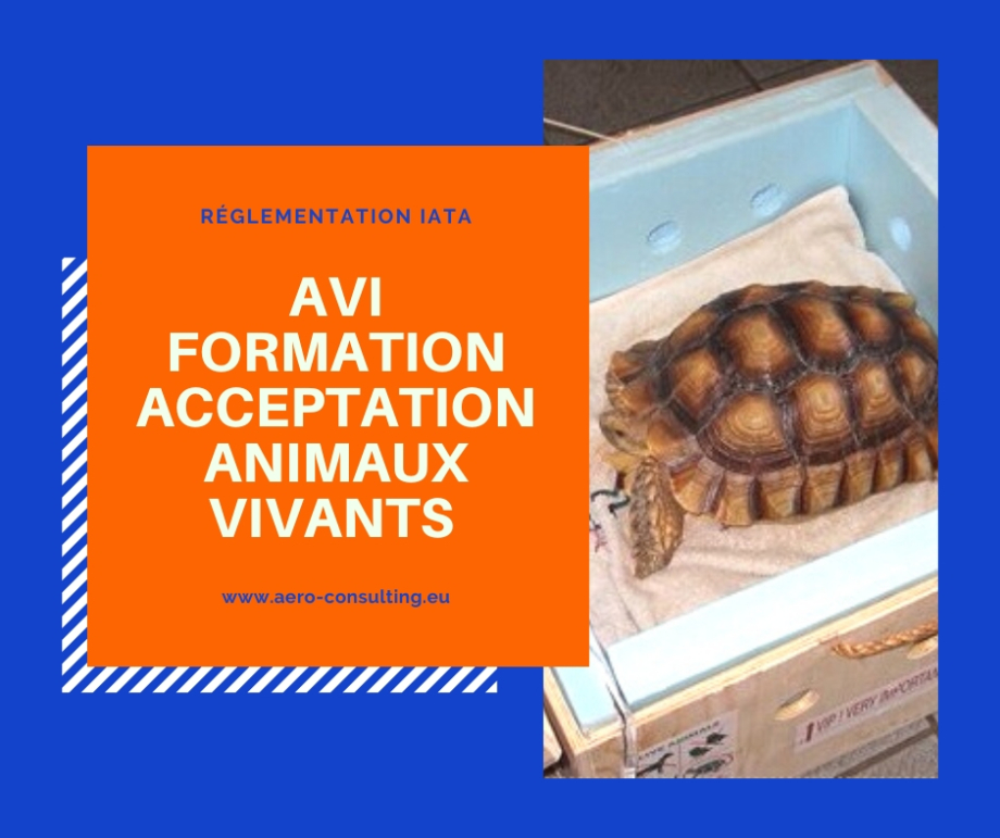 Aero Consulting Formations aéronautiques - Formation AVI - Formation Acceptation Animaux Vivants