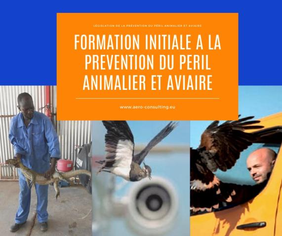 Aero Consulting Formations aéronautiques - Formation Prévention du Péril animalier