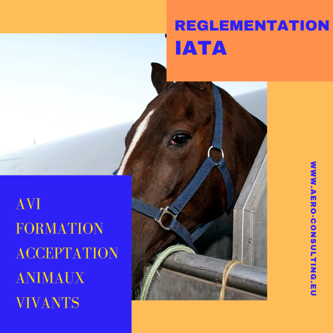 Aero Consulting Formations aéronautiques - Formation AVI Formation Acceptation Animaux vivants